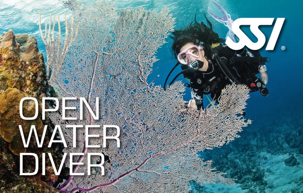 Curso Open Water Menorca